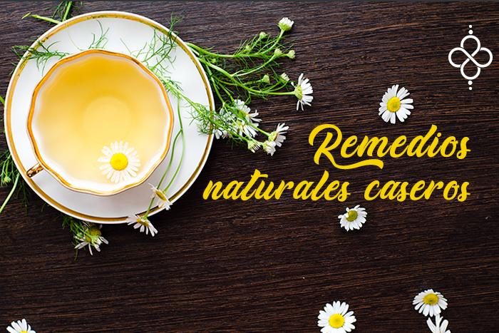Plantas curativas en tu cocina