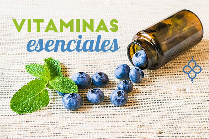 3 Vitaminas que necesita tu cuerpo