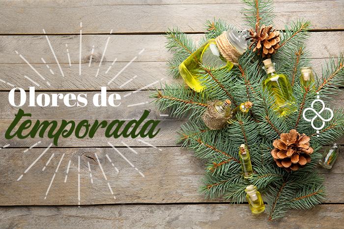 Los mejores aceites esenciales para Navidad